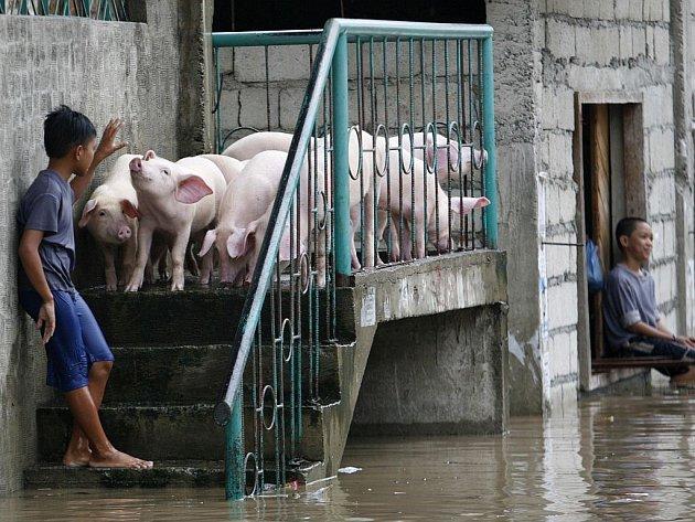 Tajfun Fenshen měl za následek zatopení rozsáhlých oblastí Filipín