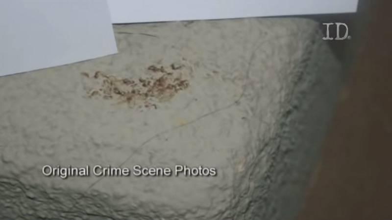 Skutečné záběry krve z pokoje, v němž byla pravděpodobně zavražděna modelka Jasmine Fioreová
