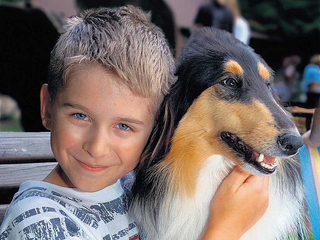 Lásku ke zvířatům bychom neměli přehánět.