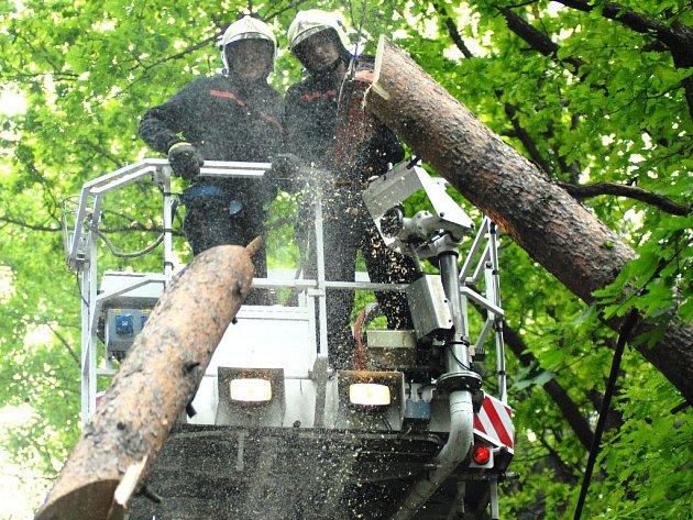 Hasiči odstraňují spadlý strom v libereckém kraji.