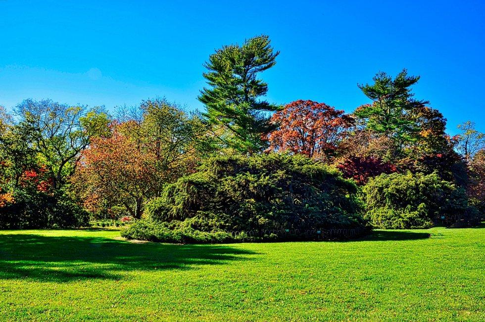 Správná výsadba stromku rozhoduje  o jeho dalším životě.