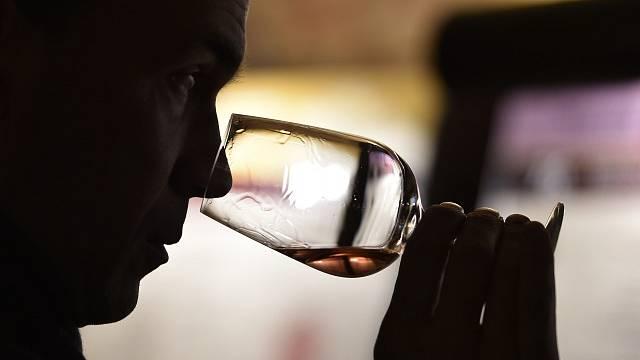 Víno, ilustrační foto