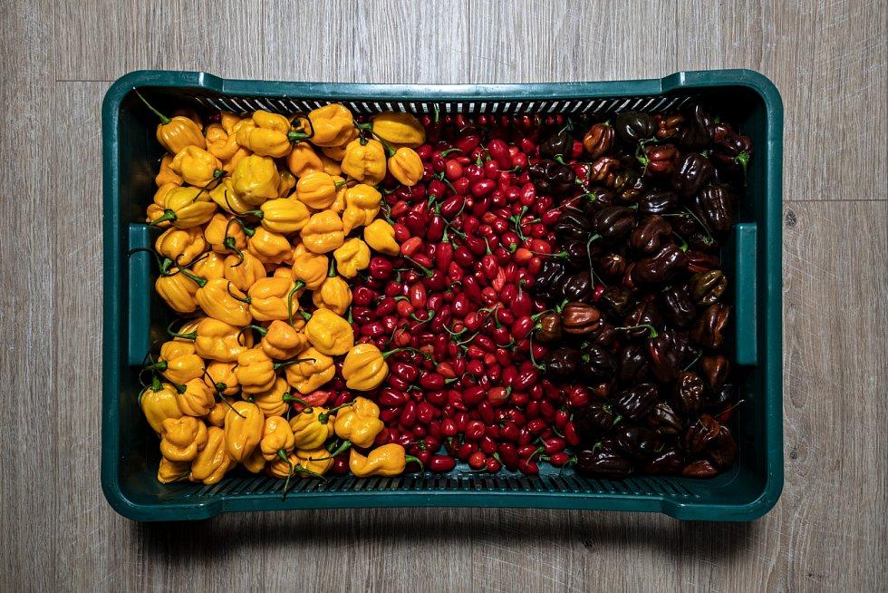 V angolské kuchyni se neobejdete bez papriček jindungo, na fotce jsou uprostřed.