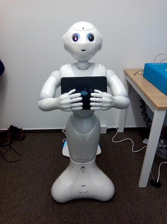 Robot se jmenuje Pepper, ale senioři si ho překřtili na Pepu. Jsou s ním kamarádi.