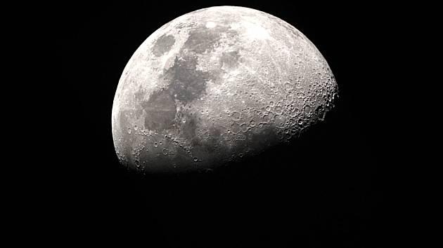 Rover Viper se na Měsíc dostane pomocí rakety Falcon Heavy společnosti SpaceX.