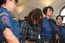 Na 25 let poslal v pátek 11. března 2011 Krajský soud v Plzni do vězení sedmadvacetiletou ženu z Nejdku za předem připravený pokus vraždy její ani ne šestileté dcery. Přivodila jí těžkou otravu fridexem, kterou dítě přežilo jen díky péči lékařů.