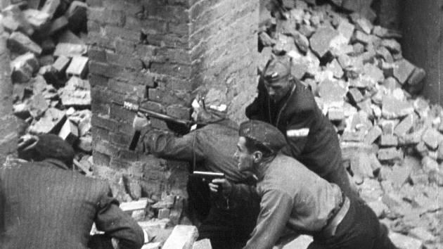 Poláci byli nedostatečně vyzbrojeni, hodně zbraní bylo jen podomácku vyrobených, nebo pocházelo z předválečných armádních skladů