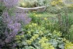I malá zahrada se může proměnit v příjemné místo. Navíc dokáže zadržet vodu