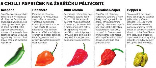 Pět chilli papriček na žebříčku pálivosti - Infografika