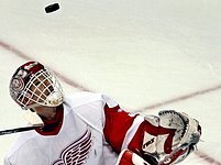 Dominik Hašek se rozhodl pro pokračování své bohaté kariéry v zámořské NHL.