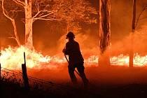 Lednové požáry v Austrálii.
