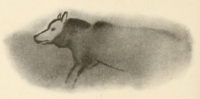 Akvarel, který vytvořil archeolog Henri Breuil podle jeskynní malby šelmy vlčího vzezření ve francouzském Font-de-Gaume, datované do doby před 19 tisíci lety