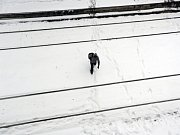 Sníh zkomplikoval dopravu v Aténách.