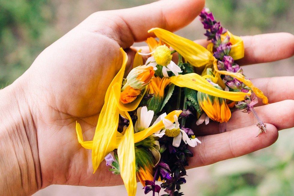 Výroba mýdla je aktivita zábavná pro děti i dospělé. Hodí se do něj levandule, růžové plátky nebo kvítky sedmikrásky. Kromě čerstvých lze použít i sušené rostliny.