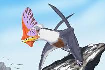 Umělecká představa možné podoby ptakoještěra Tupandactylus navigans