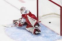 Nick Malík  - Mistrovství světa hokejistů do 20 let v Edmontonu, skupina B, utkání Česká republika - Švédsko.