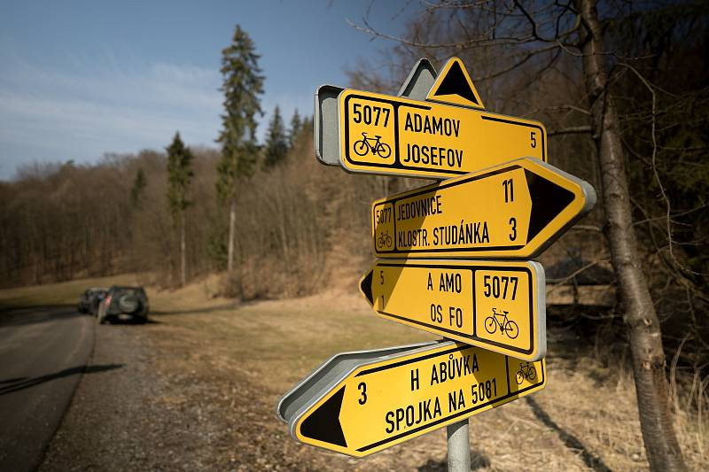 Až padesátimetrové modříny ve smíšeném lese u Habrůvky na Blanensku. Lokalita je určena pro výuku a výzkum, obhospodařuje ji Školní lesní podnik Masarykův les Křtiny.