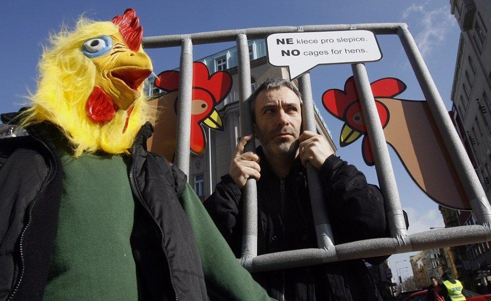 Hnutí Duha a Společnost pro zvířata zahájili na Václavském náměstí v Praze 18. března 2009 protestní kampaň s názvem Podestýlka, výběh – to je jiný příběh.