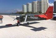 Letoun na pláži na Sand Key