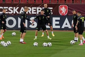 Trénink české fotbalové reprezentace - Ilustrační foto