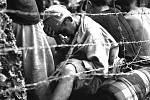 Japonský válečný zajatec za ostnatým drátem. Spolu s 306 dalšími vojáky byl zajat v posledních 24 hodinách bitvy americkou 6. námořní divizí