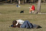 V pražském Klementinu padl 24. února 2008 teplotní rekord. Naměřili zde 16,7 stupňů. Teplé slunečné počasí přilákalo do holešovické Stromovky stovky Pražanů.