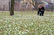 Nejvyšší teplota se zatím na stanici meteorologů v Ostravě-Porubě sice vyšplhala nad hranici patnácti stupňů Celsia, rekord ale překonán nebyl.