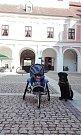 Malý Toník a jeho psí pomocník