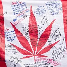 Kanada zlegalizovala užívání marihuany k rekreačním účelům
