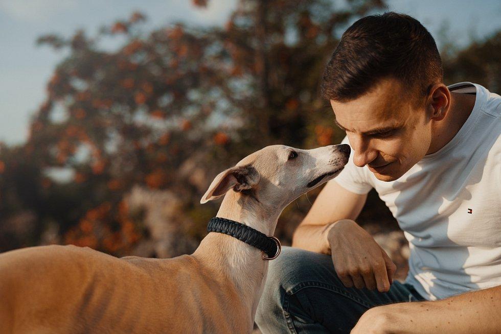 Posledním trendem ve výcviku psů je přihlédnutí ke správné motivaci zvířete.