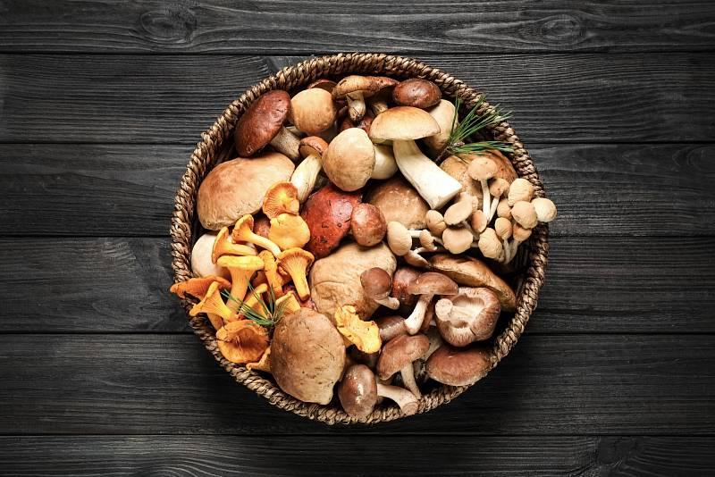 Košík plný hub