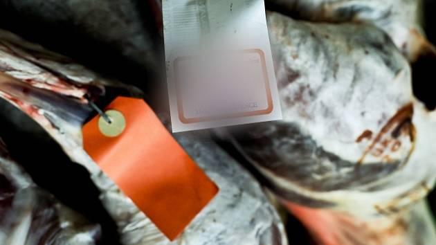 Francouzské úřady zahájily vyšetřování případu, kdy se z laboratoře do volného prodeje dostalo maso jehněte pocházejícího z geneticky modifikované ovce. Ilustrační foto.