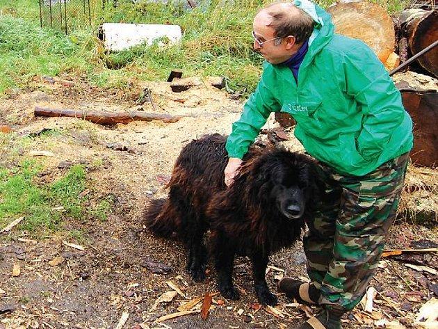 Pes, který utíká. Majitel feny Vldimir Čižek tvrdí, že jeho estrelský pastevecký pes není zlý.