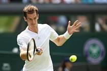 Andy Murray na Wimbledonu.