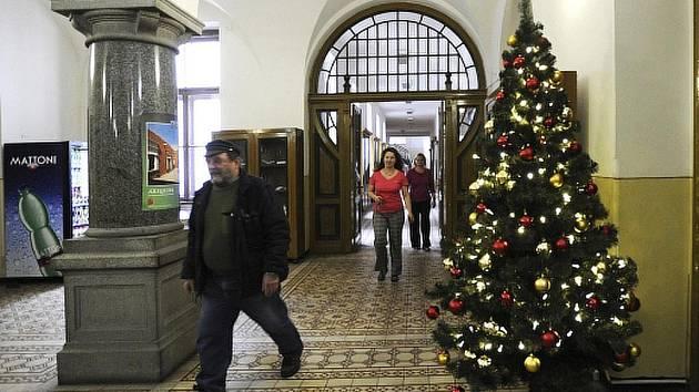Celkem 169 umělých stromků dostaly před Vánoci střední školy a domovy sociální péče v Ústeckém kraji. Koupil jim je krajský úřad, kterému prý vyzbyly peníze.