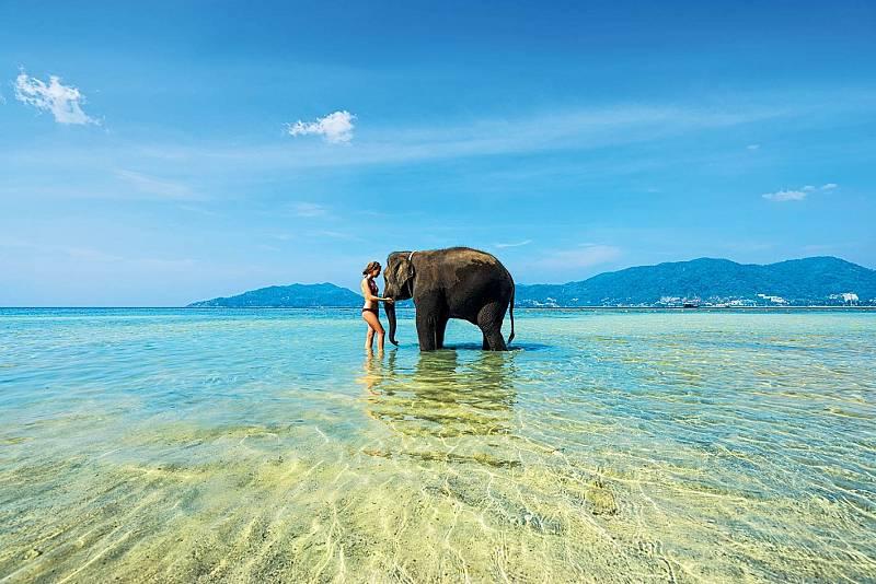 Koupající se slony naElephant Beach už dnes nepotkáte.
