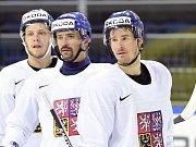 Útočníci David Pastrňák, Tomáš Plekanec a Roman Červenka.