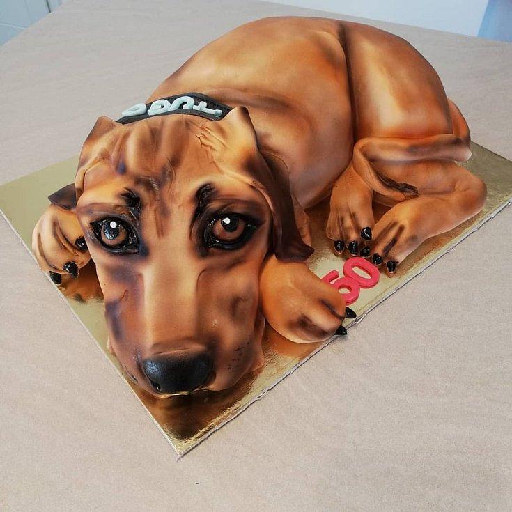 Pro milovníky psů