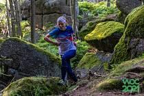 MS v orientačním běhu: Jana Knapová a závod na krátké trati