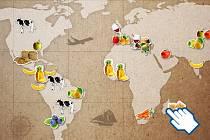 Jak probíhá import a export potravin v celosvětovém měřítku?