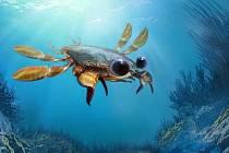 Předpokládaná podoba kraba callichimaera perplexa