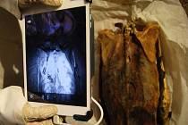 Tým archeoložky Anne Austinové objevil tetování pomocí infračerveného záření