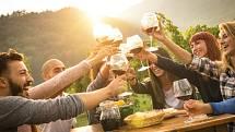 Češi nejsou jen pivaři, ale i vinaři.