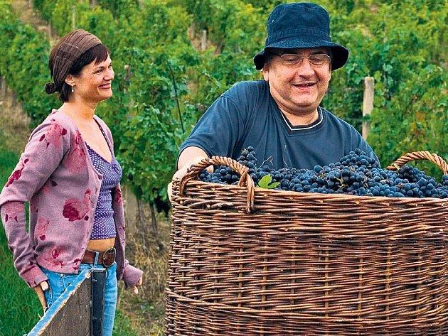 Ve třetím dílu najde Miroslav Donutil smysl života – ženu a starost o vinohrad.
