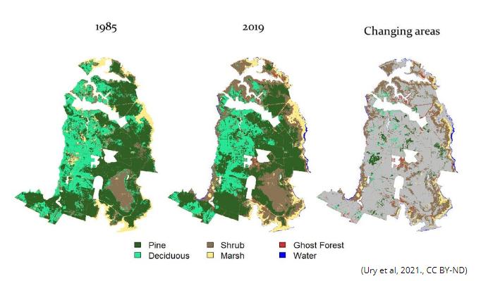 Mapa zobrazující změnu lesů