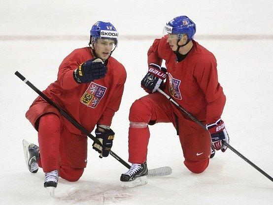 Vladimír Sobotka (vlevo) hrát nebude, Martin Ševc ano