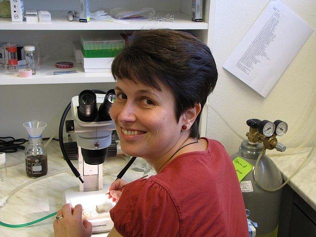 Alena Krejčí získala za svůj projekt, který zkoumá řeč buněk, stipendium L´Oréal pro ženy ve vědě ve výši čtvrt milionu korun.