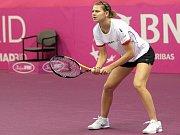 Kim Clijstersová triumfovala i na Australian Open.