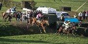 Velká pardubická 2015: Během závodu skončilo deset koní