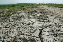Sucho, rozpraskaná pastvina - ilustrační foto